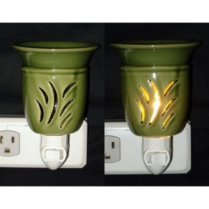 PLUG IN OIL AND TART WARMER