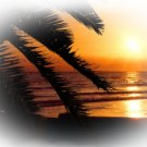 BEACH Sunset Scene Bathroom Shower Curtain beach #3