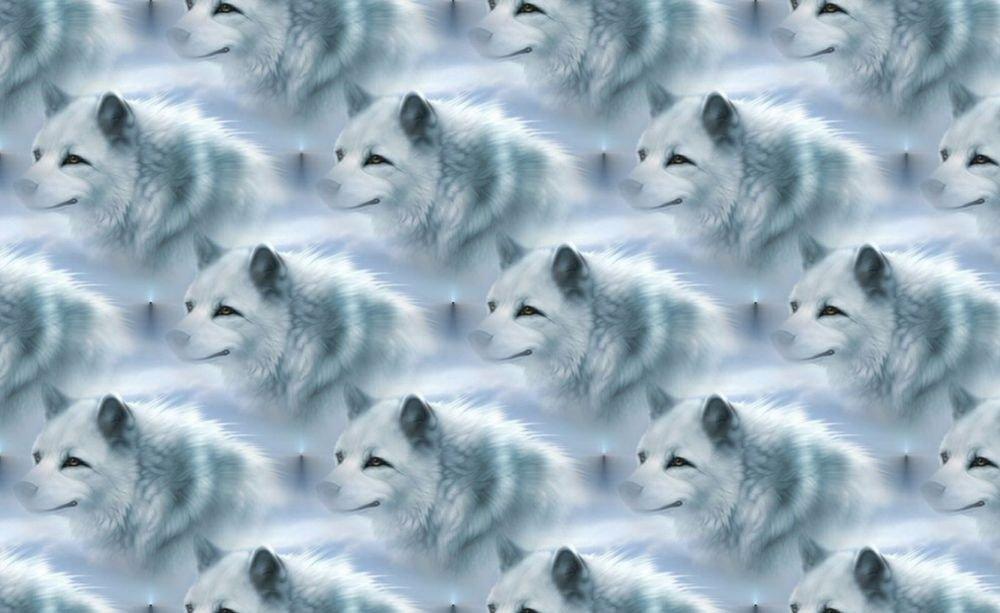 White Wolves Design Indoor Room Doormat Mat Rug in Hallway, Bedroom, Dorm
