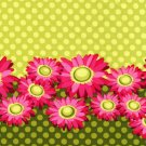 Michael Miller - Flora & Fauna - Double Border Daisy - Pattern #: DC4361_Lime - 1 yard
