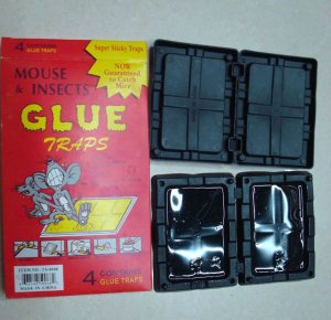 Sticky Mouse Glue Trap / Boards - 4 Pack For Rats Mice Bugs Roaches - Poison Free