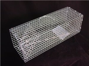 Humane Rat Trap - Metal Cage Single Door For Live Rodents - Heavy Duty