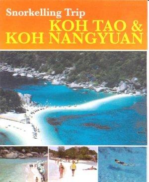 KOH TAO(ISLAND) & KOH NANGYOUA (ISLAND) Snorkelling Trip. Rates For 1 Trip