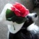 Top Hat for dogs white with rose for Small Dogs