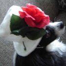 Top Hat for dogs white with rose for Medium Dogs
