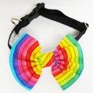Rainbow Bowtie and collar set - Large dog