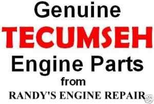 OEM Tecumseh 631719 Repair Rebuild Overhaul Carburetor
