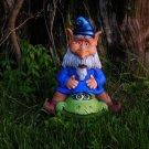 Gnome on Trutle