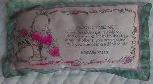 Vintage Souvenir Forget Me Not Niagara Falls`Pillow