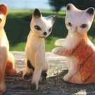 Miniature Porcelain CAT FIGURINES (3) SIAMESE & TIGER!
