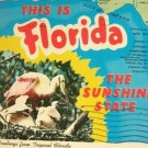 FLORIDA THE SUNSHINE STATE GREETINGS POST CARD 1984