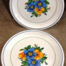 "VINTAGE TAYLOR IRONSTONE ""MORNING GLORY"" PLATES (4)"