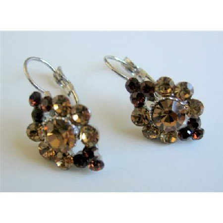 ERC470  Brown Crystals Earrings Smoked Topaz Crystals Light & Dark Earrings