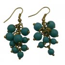 UER478  Turquoise Cluster Earrings Express The Flavor With Effervescence Earrings