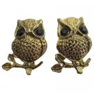 Beautiful Engraved Antique Gold Owl Earrings