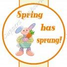 Easter Pencil or Straw Slider ~ Spring Has Sprung ~ 3 Dozen Set