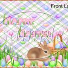 Pastel Bunny  ~ Easter ~ Gallon Can Set