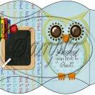 Owl Back To School Blue & Blue Back #3 ~ Pillow Box