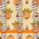 Halloween Pumpkins & Acorns ~ MINI Matchbook Nail File COVER