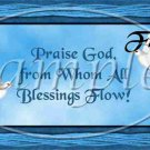 Praise God, From All Who's Blessings Flow Dove ~ Pint Glass Jar
