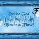 Praise God, From All Who's Blessings Flow Dove ~ Quart Glass Jar