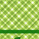 St. Patrick's Day Plaid  ~ MINI Matchbook Nail File COVER