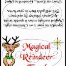 Magical Reindeer Food ~ Treat Bag Topper 1 Dozen