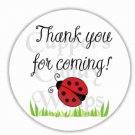 Thank You For Coming Ladybug  ~  Cupcake Pick & Toppers ~ Set of 1 Dozen