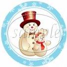 Aqua Snowflake Assorted Designs ~ Cupcake Toppers ~ Set of 1 Dozen