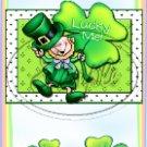 Irish Wish ~ St. Patrick's Day ~ MINI Candy Bar Wrappers