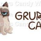 White Grumpy Cat #2 Inspired By ~  Pint Glass Jar