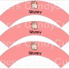 Pink / Salmon Grumpy Cat Inspired by ~  Cupcake Wrappers ~ Set of 1 Dozen