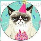 Aqua Party Grumpy Cat ~ Cupcake Toppers ~ Set of 1 Dozen