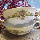 Set of 2 Noritake China PENELOPE Cream Soup Bowls