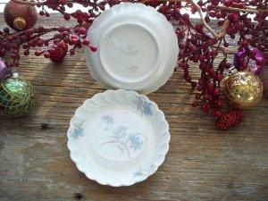 Set of 2 Blue & Brown Floral Haviland Limoges Butter Pats