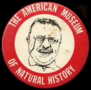 The American Museum Of Natural History Pin