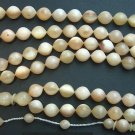 ISLAM PRAYER BEADS TESBIH WILD GOATHORN 99 BEADS GEBETSKETTE TOP CARVING