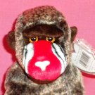 TY Beanie Babies 1999  - CHEEKS the Mandril Monkey