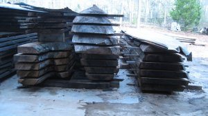 Oak Slabs-Large