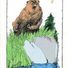 Grandmother Stories of the Northwest : Nashone (Age 12+; NORTHWEST NATIVE AMERICAN, Paperback, 1987)