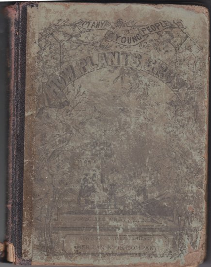 Botany for young People how plants grow asa gray M.D 1858