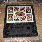 1995 Super Bowl XXIX 29 plaque San Francisco Forty Niners Steve Young QB