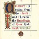 Vintage Postcard Religious Quote Embossed 1909