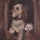Dignity and Impudence Sir Edwin Landseer Print