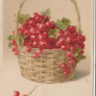 Vintage Postcard Berries from tree made in Germany early 1900's