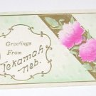 "Vintage Postcard ""Greetings From Tekamah Nebraska"""