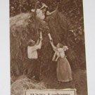 """Vintage Postcard  """"White Leghorns"""" Pulling Girl Off Haystack"""