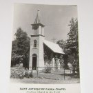 Vintage Postcard St Anthony of Padua Chapel Near Festina IA