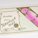 Vintage Postcard Greeting From Tekamah Nebraska embossed