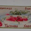 "Vintage Postcard ""Greeting From Tekamah Nebraska"" early 1900's"
